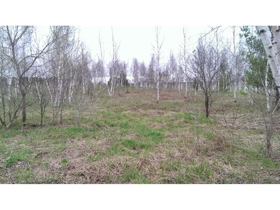 Lot 9 64th Street, Black Brook, WI - USA (photo 2)