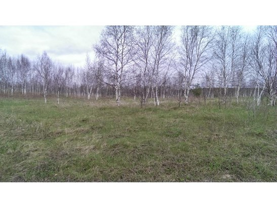 Lot 9 64th Street, Black Brook, WI - USA (photo 3)