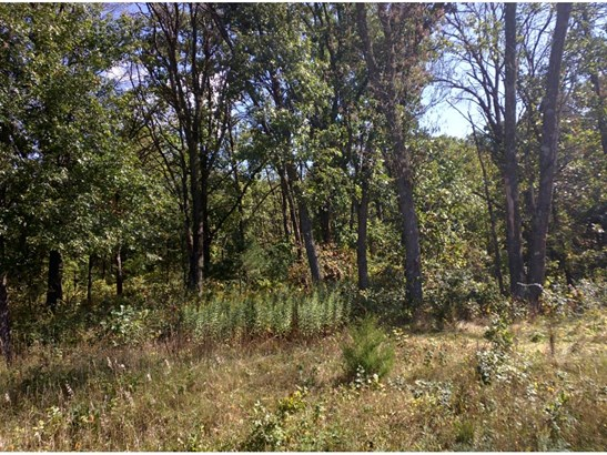 Lot 3 Blk 2 190th Street Nw, Big Lake, MN - USA (photo 1)