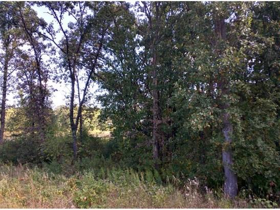 Lot 3 Blk 2 190th Street Nw, Big Lake, MN - USA (photo 5)