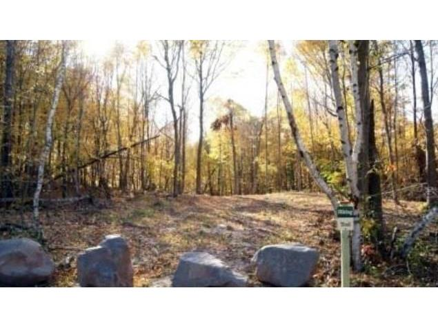 0 (lot 12) Whispering Pines Trail, Frederic, WI - USA (photo 3)