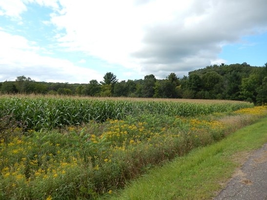 Lot 2 11th, Prairie Farm, WI - USA (photo 2)