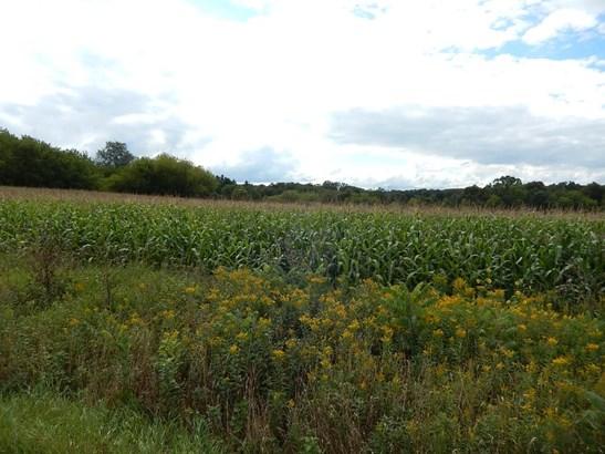 Lot 2 11th, Prairie Farm, WI - USA (photo 3)