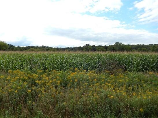 Lot 2 11th, Prairie Farm, WI - USA (photo 4)