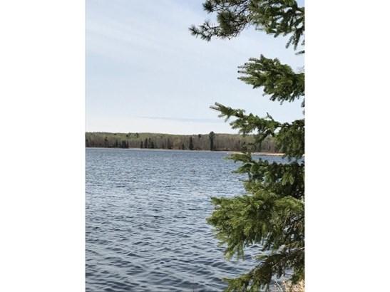 43835 Kego Lake Road, Fifty Lakes, MN - USA (photo 5)