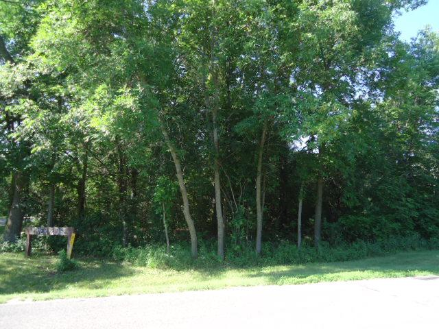Lot 1 845th Street, Hager City, WI - USA (photo 4)