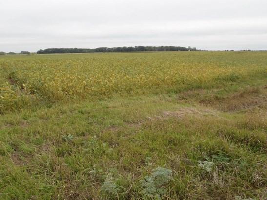 Xxx County Road 5 Nw, Garfield, MN - USA (photo 1)