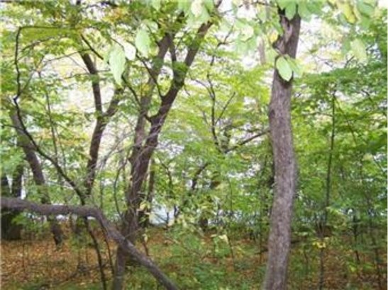 17639 Fisher Road, Cold Spring, MN - USA (photo 2)
