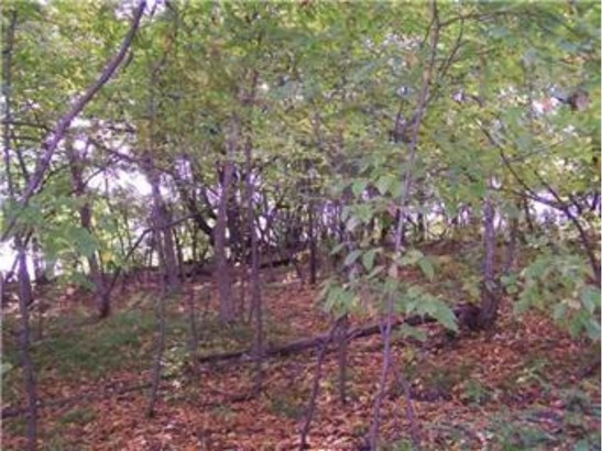 17639 Fisher Road, Cold Spring, MN - USA (photo 4)