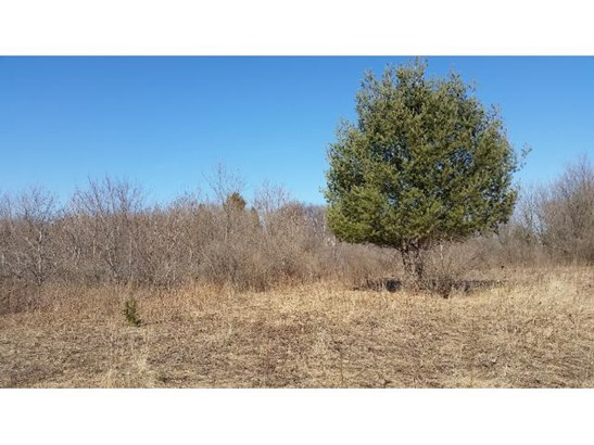 Lot 2 170th Avenue, Centuria, WI - USA (photo 2)