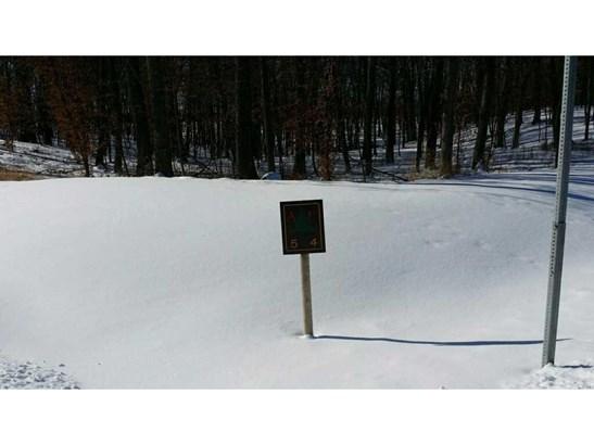 27197 Alexander Lane, Cold Spring, MN - USA (photo 2)