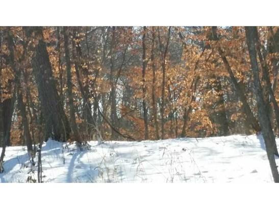 27197 Alexander Lane, Cold Spring, MN - USA (photo 3)