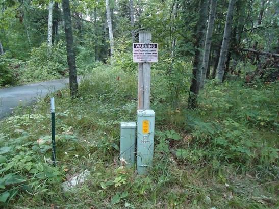 Xxxx Upper Roy Lake Road, Lake Shore, MN - USA (photo 4)