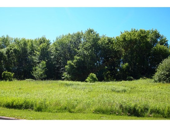 Xxxx Parkshore Drive, Arden Hills, MN - USA (photo 3)