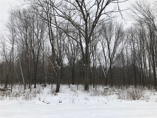 Lot 10 65th Ave, Cadott, WI - USA (photo 1)