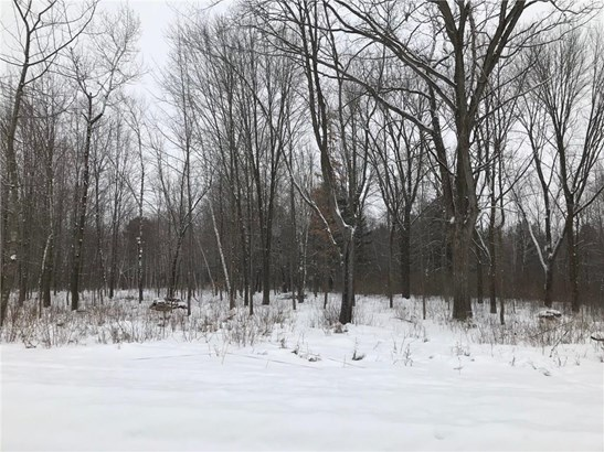 Lot 10 65th Ave, Cadott, WI - USA (photo 2)