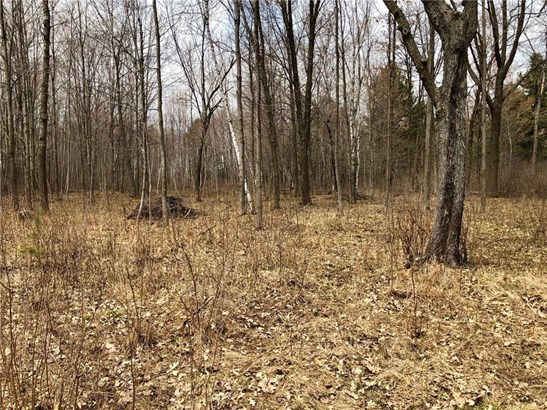 Lot 10 65th Ave, Cadott, WI - USA (photo 3)