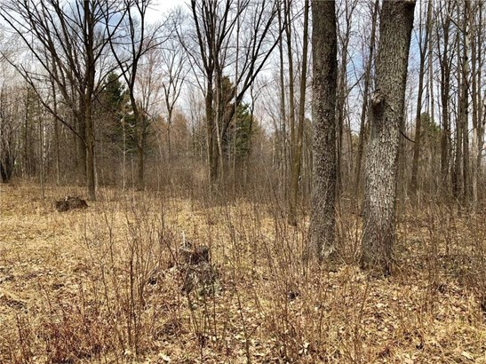 Lot 10 65th Ave, Cadott, WI - USA (photo 4)