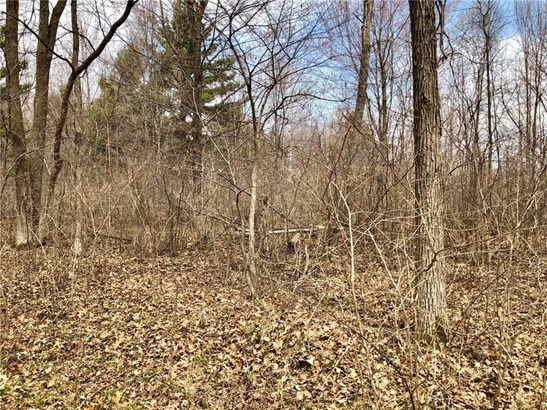 Lot 10 65th Ave, Cadott, WI - USA (photo 5)