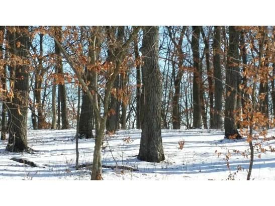 27208 Alexander Lane, Cold Spring, MN - USA (photo 3)