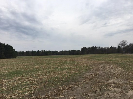 Lot 2 37.37 Acres Cty Rd N, Fall Creek, WI - USA (photo 3)