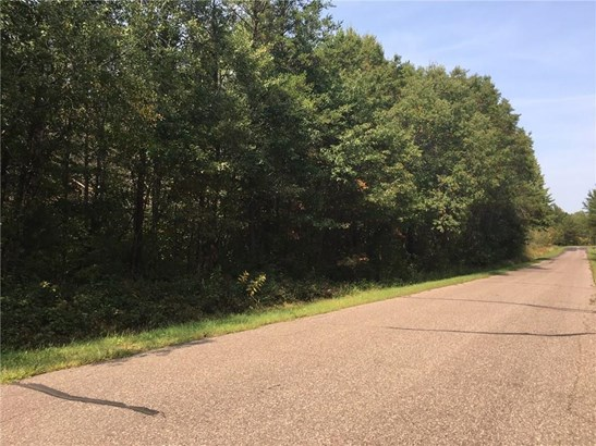 0 105th Ave 34.9 Acres, Cadott, WI - USA (photo 2)