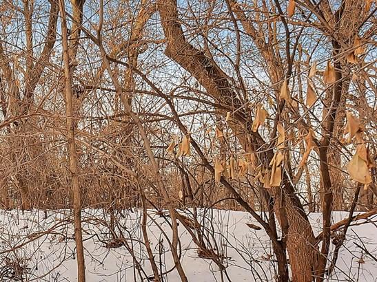1xx Wildwood Avenue, Birchwood Village, MN - USA (photo 1)