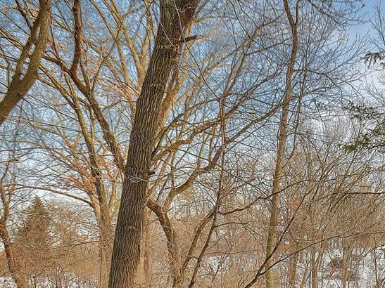 1xx Wildwood Avenue, Birchwood Village, MN - USA (photo 2)