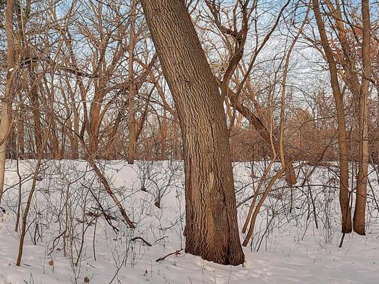 1xx Wildwood Avenue, Birchwood Village, MN - USA (photo 3)