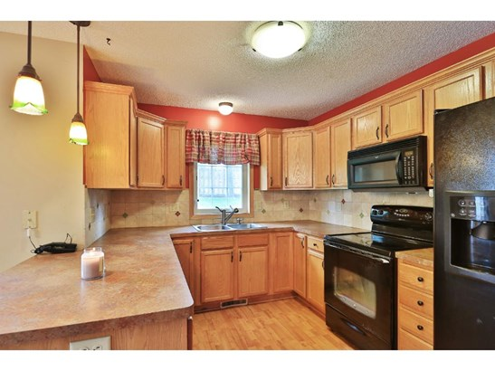 1217 9th Avenue S, Anoka, MN - USA (photo 4)