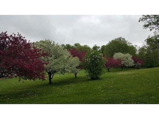2957 Hwy E, Glenwood City, WI - USA (photo 5)