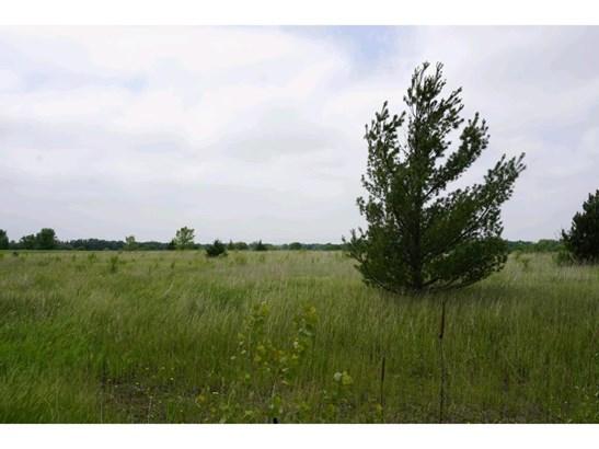 Lot 16 Scarlet Oak Court, Richmond, MN - USA (photo 1)
