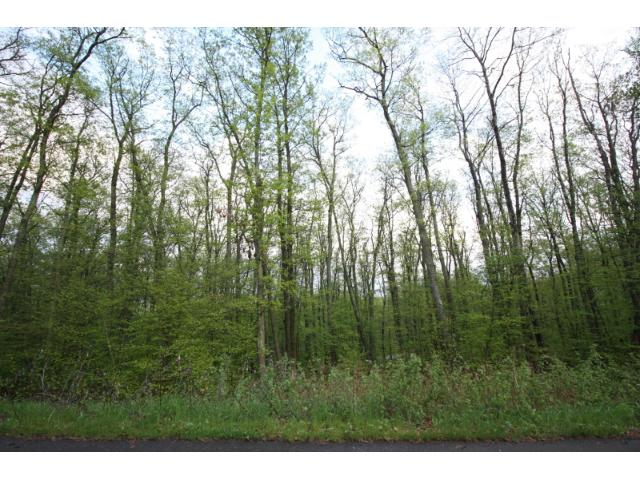 Lot 2 Blk 1 Fondie Lane, Nisswa, MN - USA (photo 4)