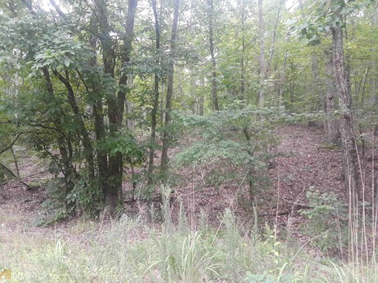 Land Lot, Agriculture,Residential Lot - Cedartown, GA