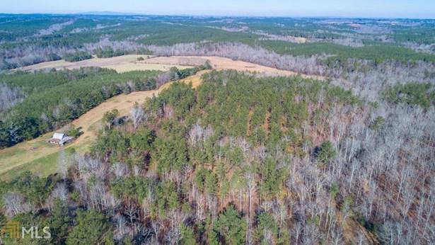 Acreage & Farm - Buchanan, GA (photo 5)