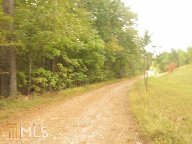 Land Lot - Cedartown, GA (photo 1)