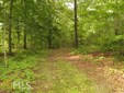 Land Lot - Cedartown, GA (photo 1)