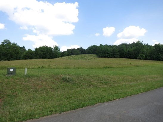 Land Lot - Lindale, GA (photo 3)