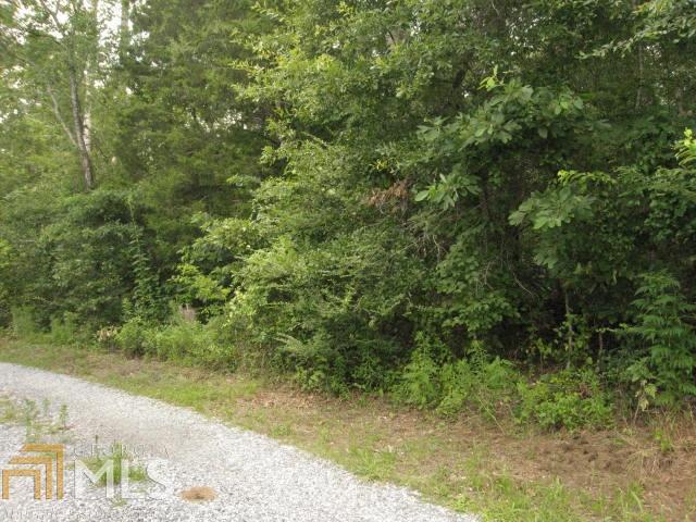 Land Lot - Cedartown, GA (photo 2)