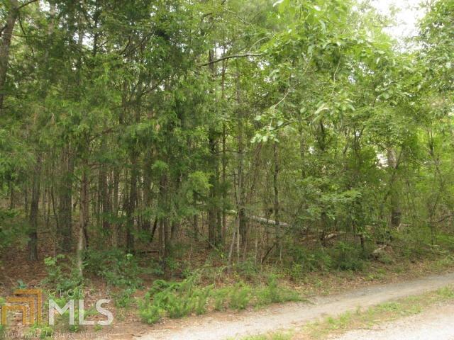 Land Lot - Cedartown, GA (photo 3)
