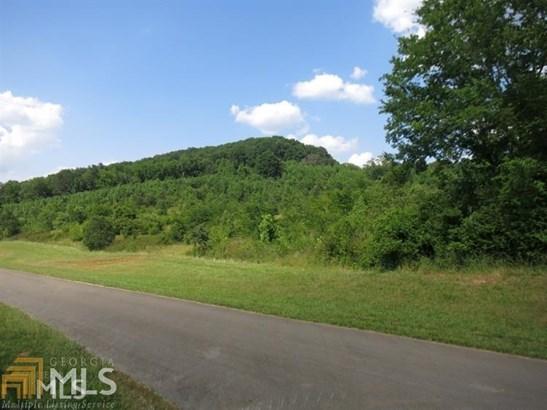 Acreage & Farm - Lindale, GA (photo 3)