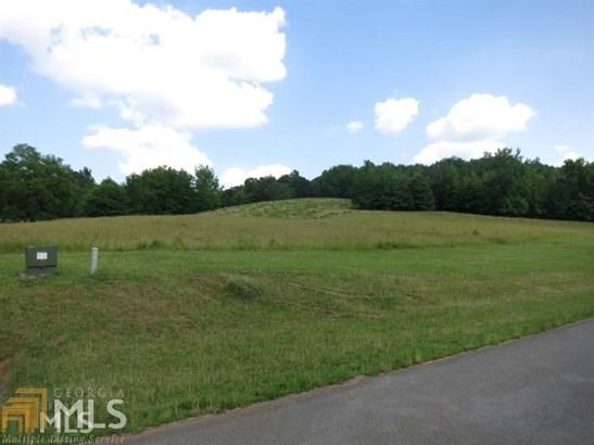 Acreage & Farm - Lindale, GA (photo 4)