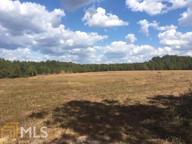 Land Lot - Rome, GA (photo 1)