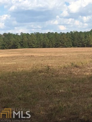 Land Lot - Rome, GA (photo 2)