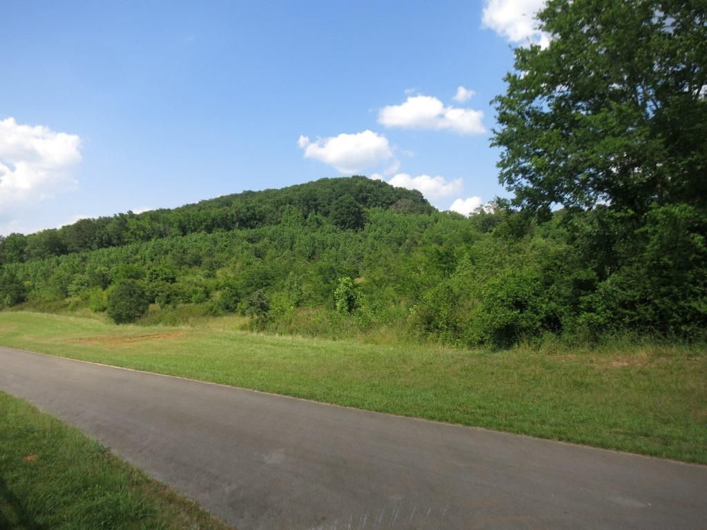Land Lot - Lindale, GA (photo 2)