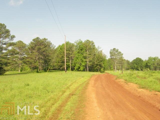 Land Lot - Cedartown, GA (photo 5)