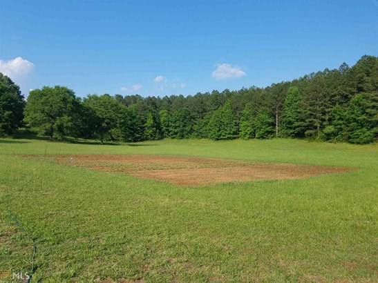Acreage & Farm - Lyerly, GA