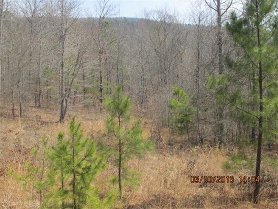 Acreage & Farm - Summerville, GA (photo 5)