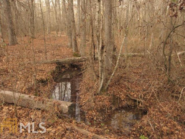 Land Lot - Rockmart, GA (photo 2)
