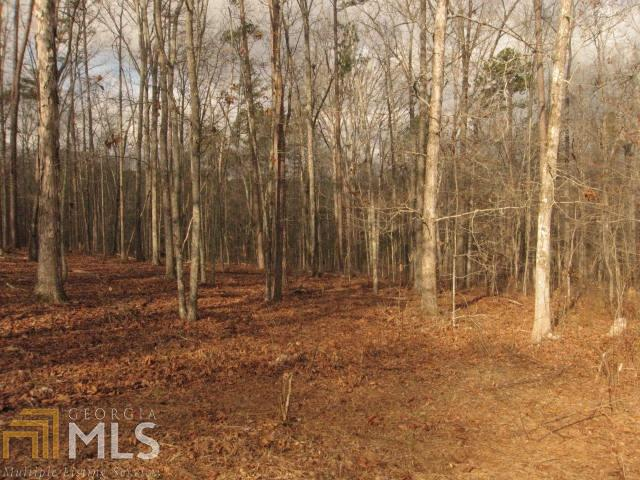 Land Lot - Rockmart, GA (photo 5)